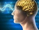 Con người có thể giao tiếp qua… suy nghĩ trong tương lai?
