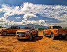 Điều gì khiến Ford Ranger thành công tại thị trường Việt Nam?