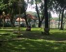 Công viên lao đao vì nợ gần 100 triệu đồng... tiền nước