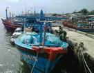 Tàu cá bị đánh cắp ở Đà Nẵng xuất hiện tại Quảng Ngãi