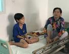 Bé 12 tuổi bị rắn lục cắn khi đang nằm trên giường xem tivi