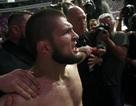 Vì sao hai bên hỗn chiến sau trận UFC kinh điển giữa Khabib và McGregor?
