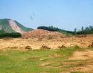 Nguyên chủ nhiệm HTX tự ý chiếm dụng hàng chục ha đất công