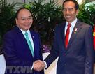 Thủ tướng sắp thăm Indonesia và dự Cuộc gặp các nhà lãnh đạo ASEAN