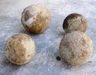 Đào giếng, phát hiện 4 quả đạn thần công thời Tây Sơn