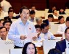 Đại biểu Hà Nội lo tình huống nhà máy điện hạt nhân Trung Quốc gặp sự cố