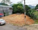 Đòi quyền sử dụng đất, người dân khởi kiện UBND TP Cao Bằng ra toà