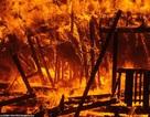 Cháy rừng thảm khốc nhất trong lịch sử California, 25 người chết, 250.000 người di tản