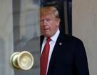 Ông Trump bị chỉ trích vì hủy thăm lễ tưởng niệm quân nhân Mỹ tại Pháp do trời mưa