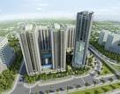 Thăng Long Capital: Dự án tầm trung vượt tiến độ