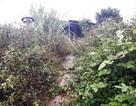 Cảnh hoang tàn nơi Làng thanh niên lập nghiệp