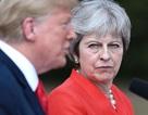 Gọi điện chúc mừng Tổng thống Trump, Thủ tướng Anh bị chỉ trích gay gắt
