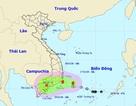 Hình thành bão số 8 trên Biển Đông