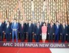 Thủ tướng hoàn thành chương trình dự hội nghị cấp cao  APEC