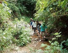 Thầy trò vùng biên băng rừng để dẫn nguồn nước về sinh hoạt
