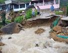 Mưa lũ, sạt lở kinh hoàng ở Nha Trang: 11 người chết, 2 người mất tích