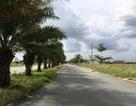 """""""Mập mờ"""" trong việc ủy quyền dự án 134 ha cho Sacombank"""