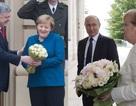 """""""Cuộc chiến hoa hồng"""" giữa ông Putin, Poroshenko và bà Merkel"""
