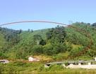 """Nhiều ha đất rừng bỗng nhiên bị """"biến mất""""  sau cấp đổi tại Nghệ An!"""