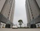 Lộ diện BĐS tăng giá mạnh nhất Nam Từ Liêm khi đường lớn chạy qua dự án
