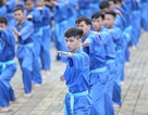 FPT Edu phá vỡ mọi kỷ lục Việt Nam về đồng diễn võ thuật