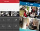 Sốc: Nhiều người Việt hồn nhiên giao mật khẩu camera an ninh cho người dưng!
