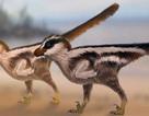 """Phát hiện hoá thạch dấu chân khủng long """"siêu nhỏ"""""""