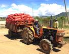 CEO PepsiCo Foods Nguyễn Đức Huy: Nông dân cần người có TÂM
