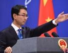 """Bị quan chức Mỹ dọa loại khỏi WTO, Trung Quốc """"phản pháo"""""""
