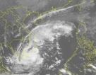 Bão số 9 tiến gần đất liền, TPHCM nguy cơ ngập lụt diện rộng