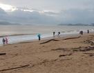 """Nha Trang: Bãi biển bị rác từ thượng nguồn """"tấn công"""" sau mưa lũ"""