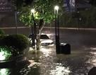"""Hàng loạt xe ôtô """"chết"""" trong đêm mưa lũ tại Tp Hồ Chí Minh"""