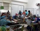 Đà Nẵng: Bệnh viện quá tải vì sốt xuất huyết tăng mạnh