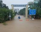 Ảnh hưởng không khí lạnh, nhiều tỉnh Nam Trung Bộ mưa to