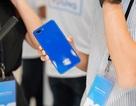 Realme C1 màu xanh chính thức bán trên kênh online của TGDĐ và FPT Shop