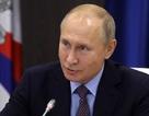 Phản ứng của Tổng thống Putin sau vụ Nga bắt giữ tàu chiến Ukraine