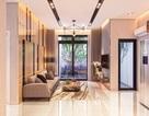 Mục sở thị căn hộ mẫu dự án Asiana Capella