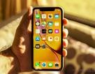 Apple khoe iPhone XR bán chạy nhất lịch sử nhưng không tiết lộ doanh số