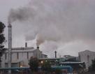 Lập mục tiêu xử lý triệt để các cơ sở gây ô nhiễm môi trường nghiêm trọng