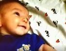 Rúng động vụ bé 4 tháng tuổi qua đời vì bị cha đẻ bỏ bê không chăm sóc đến mức bỉm có giòi