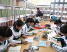 Căn cứ trả phụ cấp độc hại với nhân viên thư viện trường học