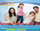 Truyền hình cáp Hanoicab – SCTV – Hợp tác để phục vụ tốt hơn