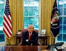 Tổng thống Trump làm gì trong ngày công bố kết quả bầu cử giữa kỳ?