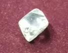 Ba đời thay nhau đào mới được viên kim cương 42 carat, trị giá 8 tỷ đồng