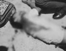 Thảm án ở huyện Củ Chi: Mâu thuẫn giành quyền nuôi con