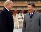 Bầu cử giữa kỳ khó lay chuyển sự cứng rắn của ông Trump với Trung Quốc