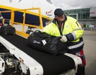 Ngủ quên trong lúc làm việc, nhân viên sân bay tỉnh dậy cách xa nhà... 800km