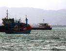 Đề nghị giúp 3 tàu cá Bình Định vào đảo Hải Nam - Trung Quốc tránh gió