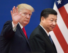 """Ông Trump không biết vụ bắt sếp Huawei khi """"đình chiến"""" thương mại với Trung Quốc"""
