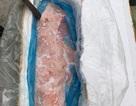 Bắt giữ 1,3 tấn nầm lợn mốc xanh, bốc mùi hôi thối